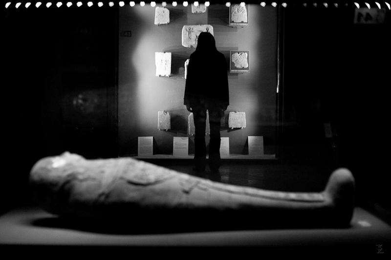 Noc w Muzeum