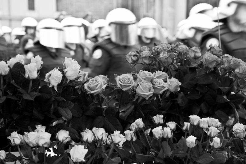 Na dole róże, na górze